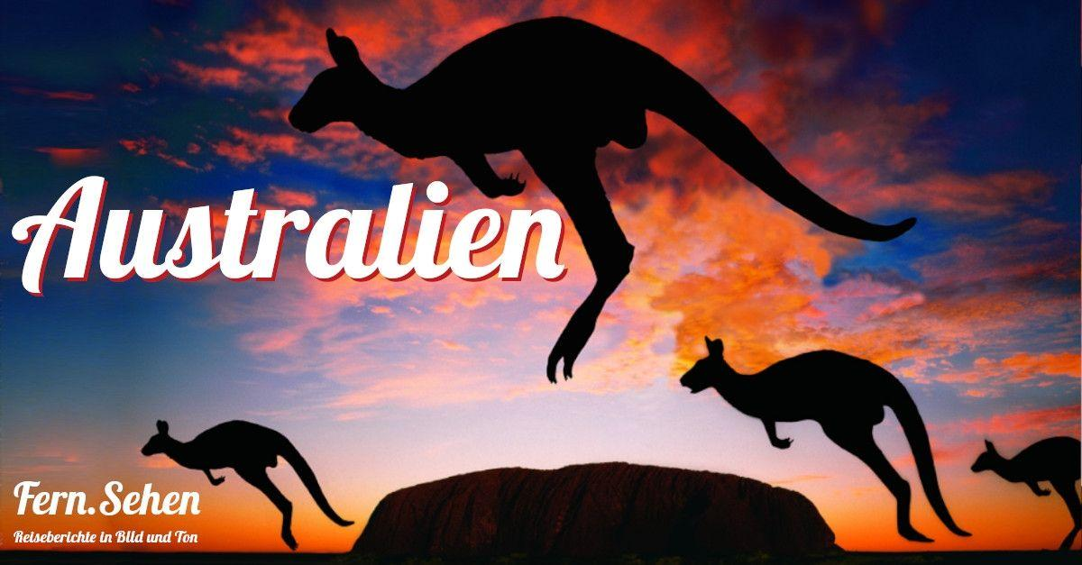 Fern.Sehen im Liegestuhl | Australien
