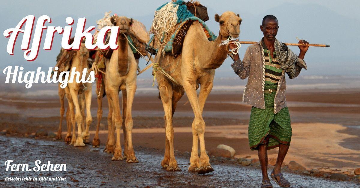 Fern.Sehen im Liegestuhl | Afrika